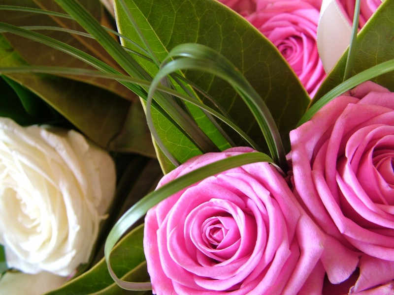 Bouquet Wedding Discovery Basque